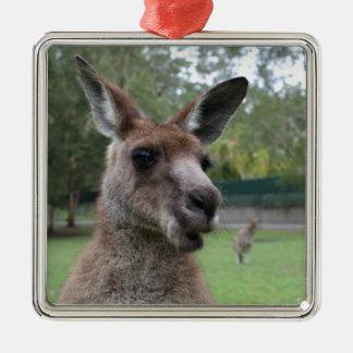 Adorno De Cerámica Selfie del canguro