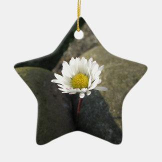 Adorno De Cerámica Sola flor de la margarita blanca entre las piedras