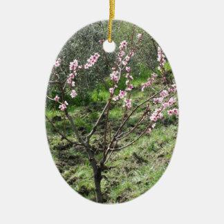 Adorno De Cerámica Solo árbol de melocotón en flor. Toscana, Italia