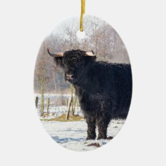 Adorno De Cerámica Vaca escocesa negra del montañés en nieve del