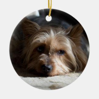 Adorno De Cerámica yorkhire/ornamentos de Terrier sedoso