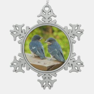 Adorno De Peltre Tipo Copo De Nieve Fotografía del pájaro de la naturaleza de los