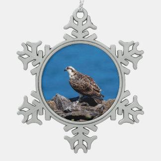 Adorno De Peltre Tipo Copo De Nieve Osprey en las rocas