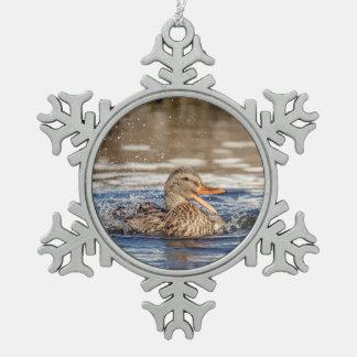 Adorno De Peltre Tipo Copo De Nieve Pato del pato silvestre en el parque que traga