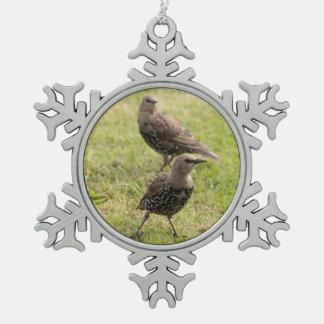 Adorno De Peltre Tipo Copo De Nieve Starlings