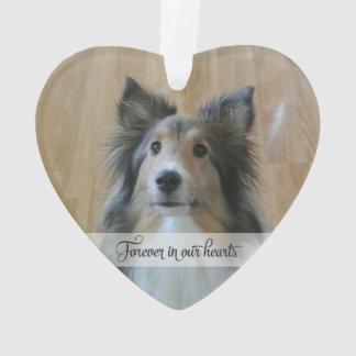 Adorno En la memoria - pérdida de mascota - foto de