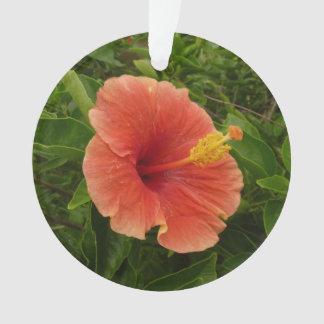 Adorno Floral tropical de la flor anaranjada del hibisco