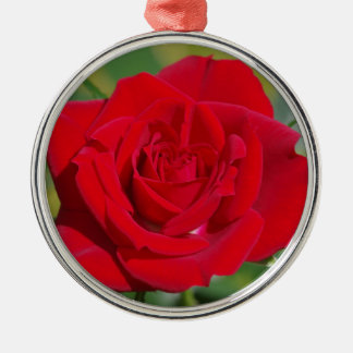 Adorno Metálico Belleza del rosa rojo