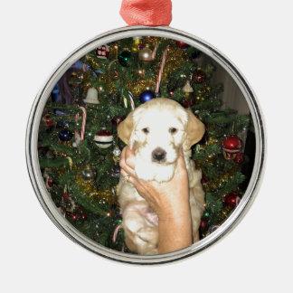 Adorno Metálico Charlie el perrito de GoldenDoodle en navidad