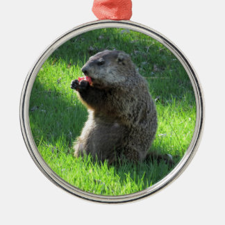Adorno Metálico Consumición de Groundhog