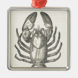 Adorno Metálico Ejemplo de los cangrejos del vintage (1896)