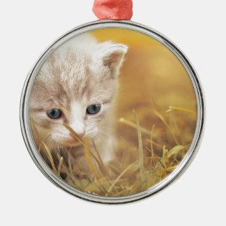 Adorno Metálico El encantar lindo del animal de mascota del gatito