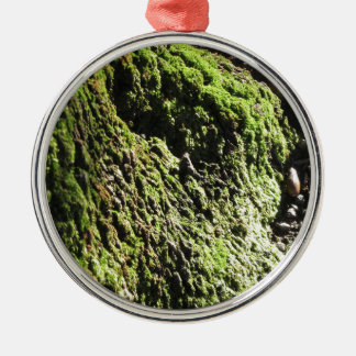 Adorno Metálico El musgo verde en el detalle de la naturaleza del