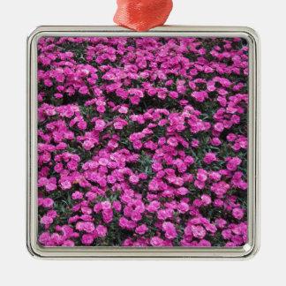 Adorno Metálico Fondo natural de las flores púrpuras del clavel