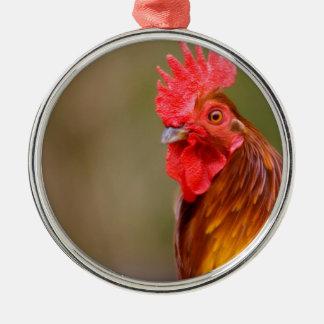 Adorno Metálico Gallo con la cabeza roja del peine