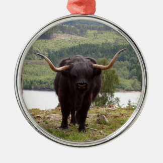 Adorno Metálico Ganado negro de la montaña, Escocia