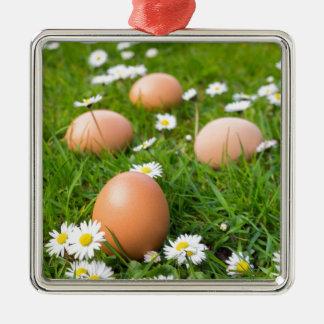 Adorno Metálico Huevos del pollo en hierba de la primavera con las