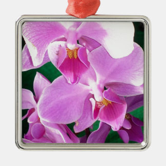 Adorno Metálico La orquídea florece primer en rosa