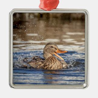Adorno Metálico Pato del pato silvestre en el parque que traga