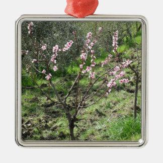 Adorno Metálico Solo árbol de melocotón en flor. Toscana, Italia