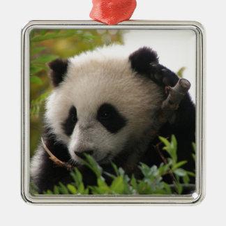 Adorno Metálico Su Lin, cachorro de oso de panda gigante en el
