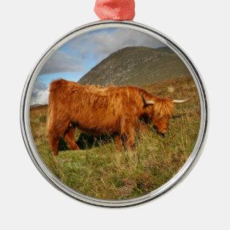 Adorno Metálico Vacas escocesas de la montaña - Escocia