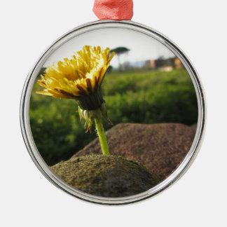 Adorno Metálico Wildflower amarillo que crece en piedras en la