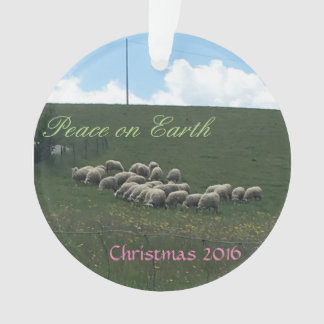 Adorno Paz en el navidad