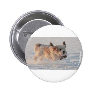 Afloramiento Griffon Vendéen, perro de perrito Chapa Redonda De 5 Cm