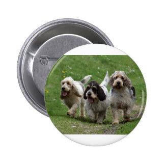 Afloramiento Griffon Vendéen, perro magnífico Chapa Redonda De 5 Cm