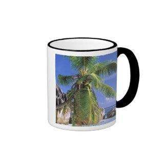 África, Seychelles, isla de Digue del La. Granito  Tazas De Café