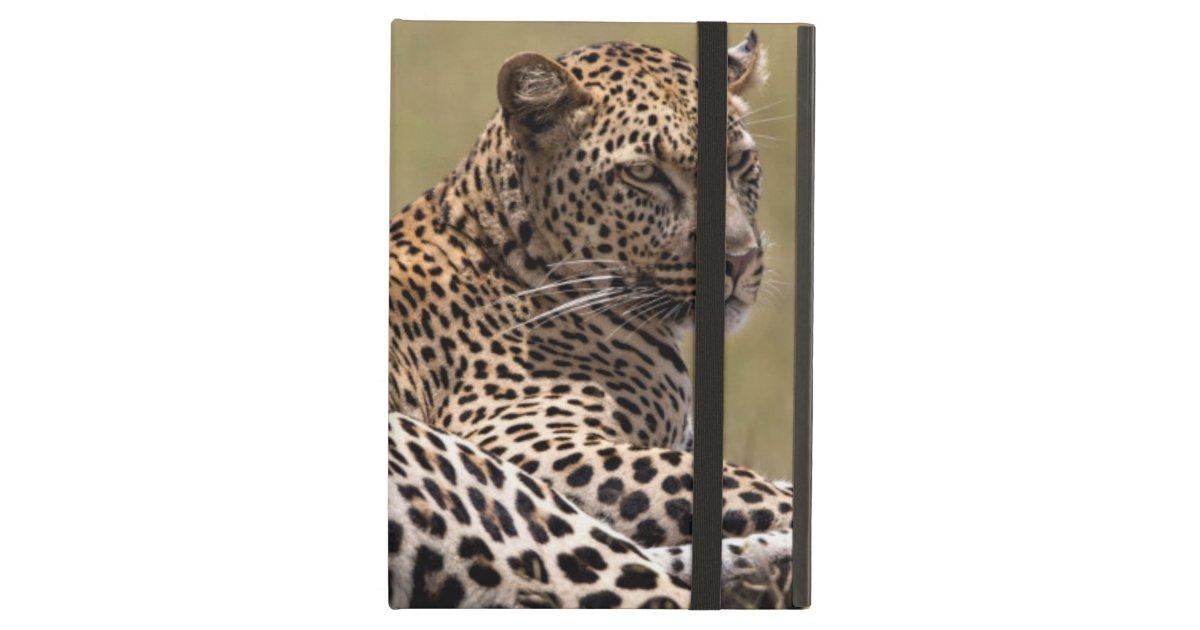 Frica tanzania serengeti leopardo zazzle for Decoracion hogar leopardo