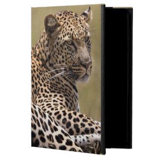 África, Tanzania, Serengeti. Leopardo