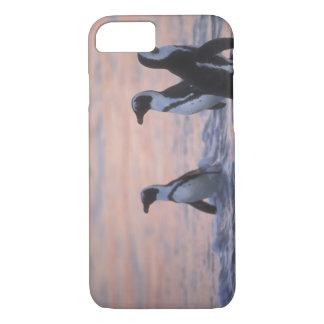 Africano de Pingüino (demersus del Spheniscus) o Funda iPhone 7