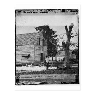 Afroamericanos que preparan algodón circa 1862 postal