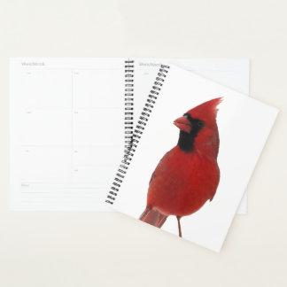 Agenda Naturaleza animal del pájaro cardinal