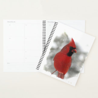 Agenda Pájaro cardinal rojo en nieve