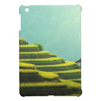agricultura Asia verde