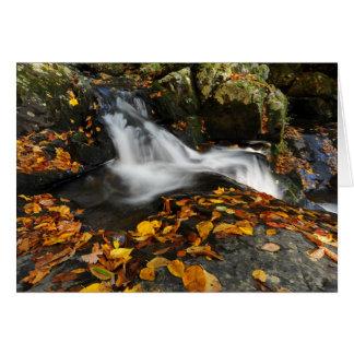 Agua calmante tarjeta de felicitación