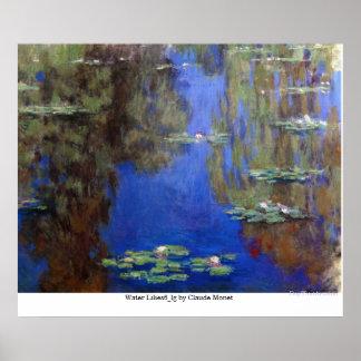 Agua Lilies6_lg de Claude Monet Póster