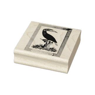 Aguafuerte toucan del pájaro del vintage sello de caucho