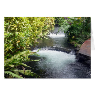 aguas de Costa Rica Tarjeta De Felicitación