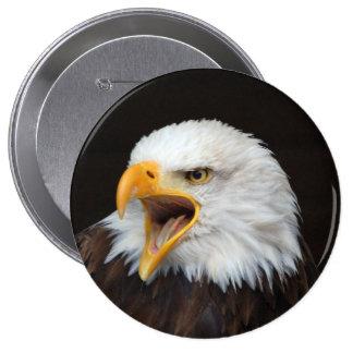 Águila de lago de cabeza de weis chapa redonda de 10 cm
