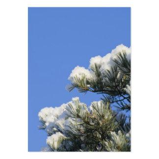 Agujas del pino tarjetas de visita grandes