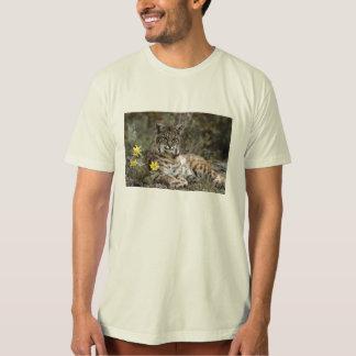 Ahorre el lince ibérico camiseta