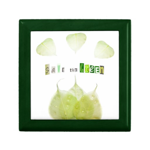 Ahorre el verde, concepto de la ecología caja de recuerdo