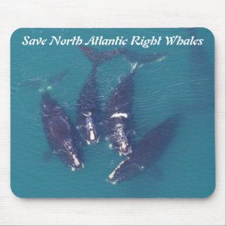 Ahorre las ballenas derechas de Atlántico Norte Alfombrilla De Ratón
