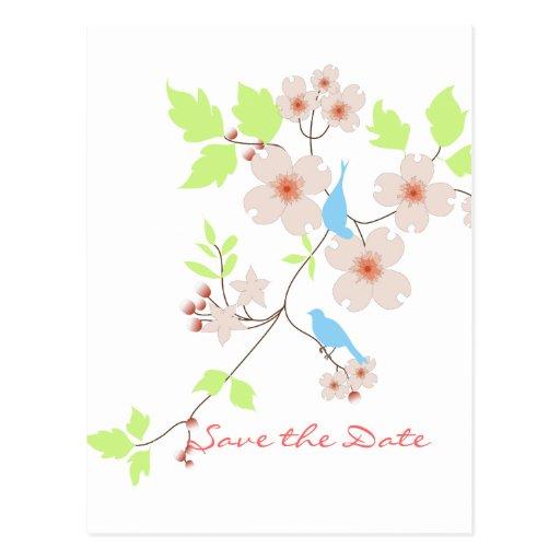 Ahorre los dogwoods azules de los pájaros de la fe postal
