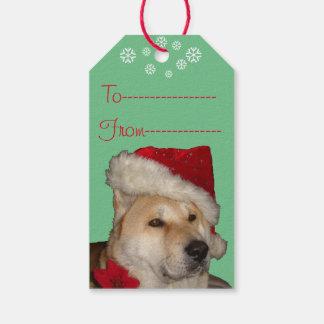 Akita lindo en perro rojo del navidad del gorra de etiquetas para regalos