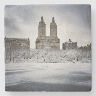 Al borde de congelado en Central Park Posavasos De Piedra
